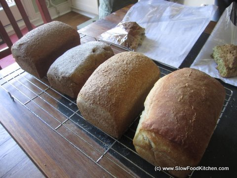Bread Making Courses London