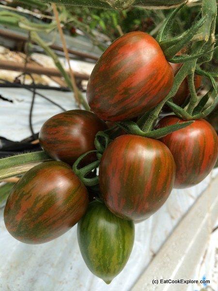 the tomato stall