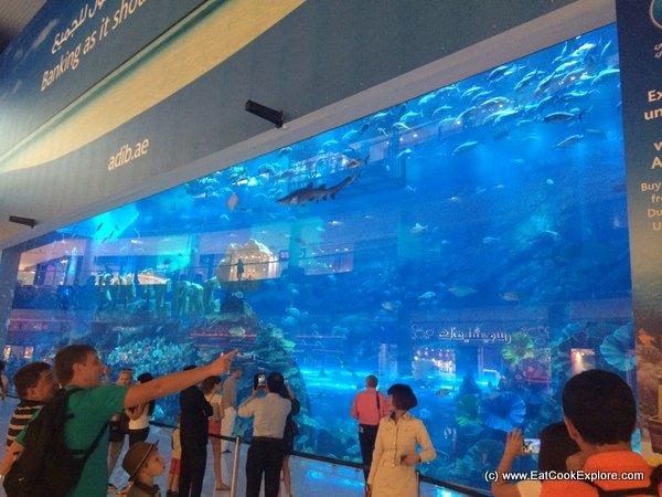Giant Aquarium Dubai Mall