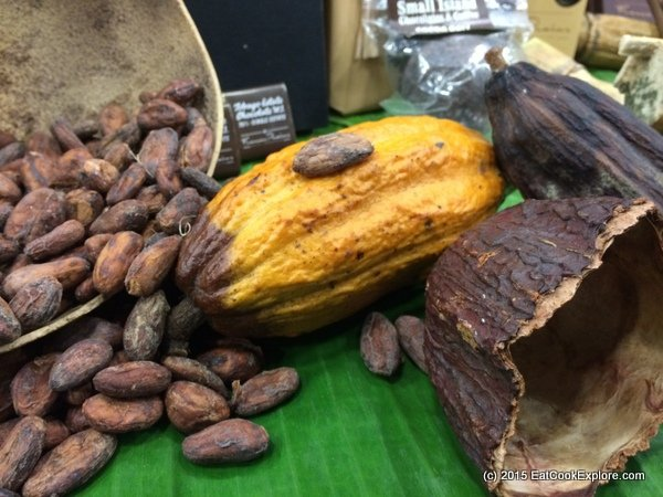 Chocolate Show cocoa pods and cocoa beans