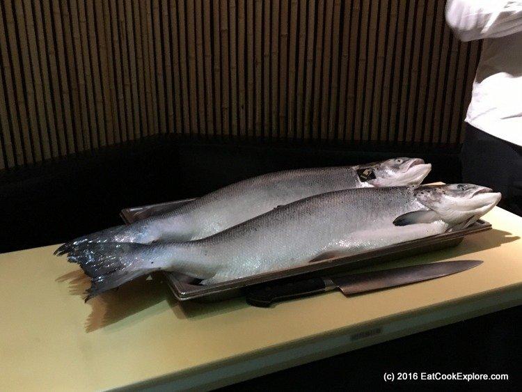 004-salmon-006