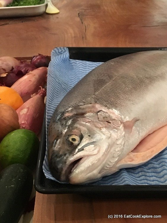 Super fresh, bright eyes fjord-trout