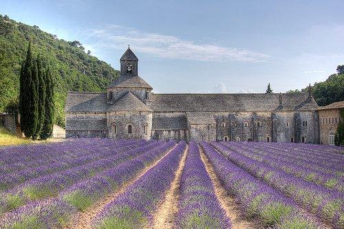 Abbaye de Sénanque Provence