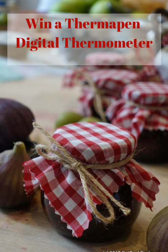 Win a Thermapen Digital Thermometer