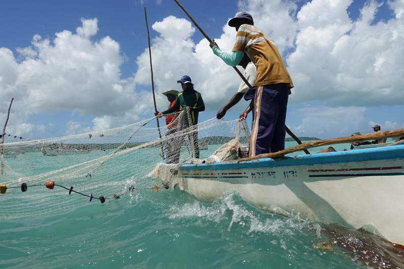 Rodrigues Island Seine Fishing