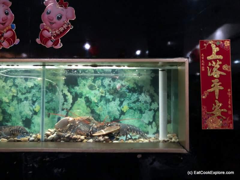 Royal China Carnary Wharf Fish tank with live lobster and fish